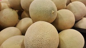melon-1388338_960_720